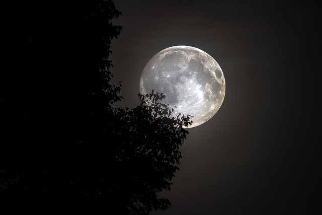 'full moon madness'  http://goo.gl/VOs89H